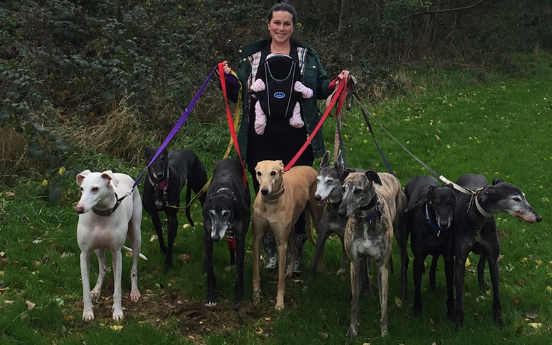 kerry with greyhounds